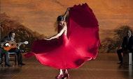 Tour de flamenco en Sevilla con espectáculo