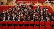 Musicais polo Nadal -  Orquestra Gaos (Teatro Colón)