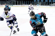 Stenaline Belfast Giants V Sheffield Steelers
