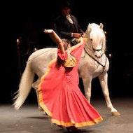 Ópera Flamenca Carmen de Salvador Távora