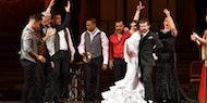 Opera y Flamenco | Palau de la Música Catalana, Barcelona