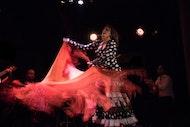 Degustación de tapas por la noche y tour de Flamenco en Madrid
