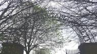 Clifton House & Cemetery Tour