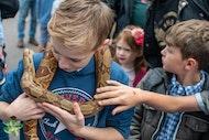 Reptile Exhibition: Southampton