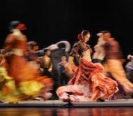 Espectáculo de flamenco  en Granada con bebida o cena