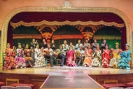 Visita guiada nocturna por Sevilla con espectáculo de flamenco y tapas