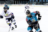 Stenaline Belfast Giants V Nottingham Panthers