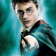 Harry Potter Quiz At Baltic Market