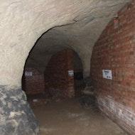Peel Street Mammoth Cave Tour
