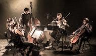 Islander Presents Radiohead Reimagined: Wooden Elephant Play Kid A