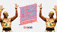 BINGO LINGO: YORK - MECCA TOUR