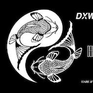 Blinded Media presents DXWNSIDES + Fullshore + guests