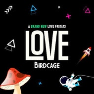 Love Fridays at Birdcage £1 entry & drinks before 12