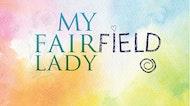 My Fairfield Lady