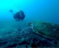 Greg Foot - Deep Ocean Lab