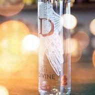 Divine Gin evening