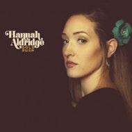 Hannah Aldridge & The Goat Roper Rodeo Band