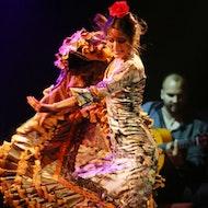 Flamenco Barcelona City