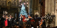 VIENNESE CHRISTMAS by Candlelight, Thursday 20 Dec - Newcastle