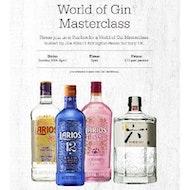World of Gin Masterclass
