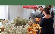 Tour de mercado de la mañana de Sevilla con tapas