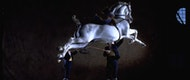 Cómo bailan los caballos andaluces