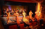 Espectáculo de flamenco en el Palacio del Flamenco con bebida o cena