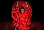 Entradas para el Teatro Flamenco Madrid